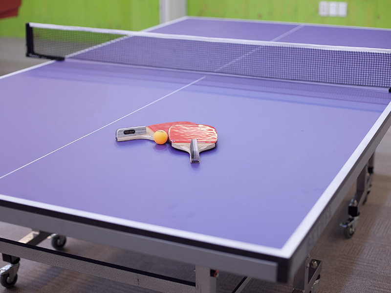 Table Tennis Courts