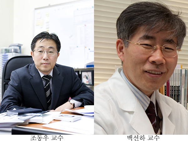 조동우 교수, 백선하 교수