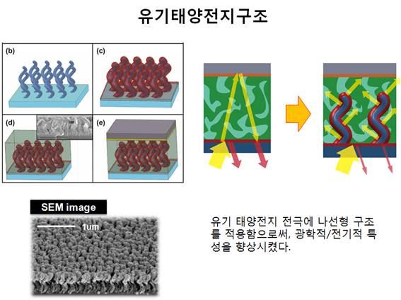 유기태양 전지 구조