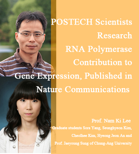 POSTECH Scientists Research RNA Polymerase Contribution to Gene Expression, Published in Nature Communications