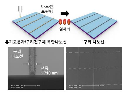 그림 1. (상) 구리 나노선 프린팅 공정 모식도, (하, 좌) 구리 나노선 단면의 전자 현미경 사진, (하, 우) 균일하게 정렬된 구리 나노선의 전자 현미경 사진.