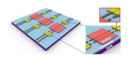 그림 2. 구리 나노선을 소스/드레인 전극으로 사용한 전계 효과 트랜지스터 모식도.
