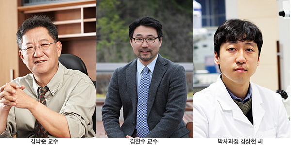김낙준 김한수 김상헌 연구팀