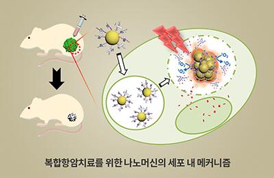 화학 김원종 교수팀, 유방암 잡을 어벤져스 나노머신이 나왔다