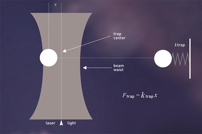 레이저포획의 원리 이미지3