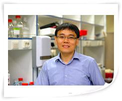 POSTECH 생명과학과 황철상 교수팀, Cell지 통해 새로운 단백질 분해신호 밝혀내
